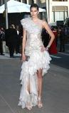 Hana Soukupova Photo - Photo by Victor Malafrontestarmaxinccom20116611Hana Soukupova at the CFDA Awards(NYC)