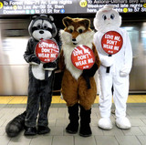 Calvin Klein Photo - Photo by PETAstarmaxinccomSTAR MAX2015ALL RIGHTS RESERVEDTelephoneFax (212) 995-1196121516Its Christmastime in the cityand a fleet of PETA mascots including two rabbits a fox and a raccoon will hit the streets and the subway on Thursday to encourage holiday shoppers to keep fur off their shopping lists The costumed crusadersalong with human helpers wielding anti-fur signs and leafletswill start in Herald Square at noon and then take the R train to Prince Street PETAs mascot pals will remind shoppers from Macys to Bloomingdales that every fur coat collar or cuff costs sensitive animals their lives says PETA Associate Director Ashley Byrne Caring people can offer animals a little comfort and joy this holiday season by refusing to buy or wear fur PETAwhose motto reads in part that animals are not ours to wearnotes that most animals used for fur spend their entire lives confined to cramped filthy wire cages until they are bludgeoned poisoned electrocuted or even skinned alive Thats part of why a growing number of top designers and retailersincluding Stella McCartney Calvin Klein Vivienne Westwood Giorgio Armani HM Topshop Zara Urban Outfitters Gap Inc JCrew and many moreare all fur-free