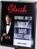 Hayley Roberts Photo - David Hasselhoff celebrates his birthday at Blush Boutique with girlfriend Hayley Roberts Nightclub inside The Wynn Las Vegas NV 072311