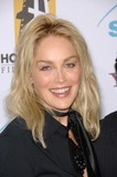 Sharon Stone Photo - SHARON STONE at the 10th Annual Hollywood Awards Gala - the closing gala of the 2006 Hollywood Film Festival - at the Beverly Hills Hilton October 23 2006  Los Angeles CAPicture Paul Smith  Featureflash