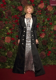 Anna Wintour Photo - London UK Anna Wintour  at the 65th Evening Standard Theatre Awards London Coliseum London England on the 24th  November 2019Ref LMK73-S2621-251119Keith MayhewLandmark MediaWWWLMKMEDIACOM