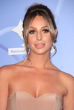 Amber Dowding Photo - London UK Amber Dowding at National Lottery Awards 2017 at The London Studios Upper Ground London on September 18th 2017Ref LMK73-J760-190917Keith MayhewLandmark MediaWWWLMKMEDIACOM