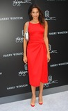 Astrid Munoz Photo - The New York Collection by Harry Winston Launch Party at Harry Winston Salon in New York City 09-13-2009 Photo by Barry Talesnick-ipol-Globe Photos Inc 2009 I14613bt Astrid Munoz