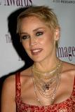 Sharon Stone Photo - the 2004 American Image Awards Grand Hyatt Hotel New York City 05032004 Photo Barry Talesnick  Ipol  Globe Photos Inc 2004 Sharon Stone Sharon Stone