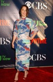 Robin Tunney Photo - Robin Tunney attends the Tca Summerpress Tour at the Pacific Design Center in Los Angelesca on July172014 Photo by Phil Roach-ipol-Globe Photos