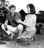 Andy Griffith Photo - Andy Griffith Photo by Supplied by Smp-Globe Photos