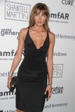 Alina Baikova Photo - Alina Baikova at Amfar Generation Cure Supporters to Ring in Summer at 4th Annual Solstice Event at the Hudson Hotel W58st 6-23-