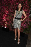 Anh Duong Photo - Chanel Hosts 8th Annual Tribeca Film Festival Artists Dinner the Odeon NYC April 24 2013 Photos by Sonia Moskowitz Globe Photos Inc 2013 Anh Duong