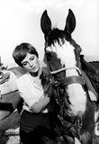 Jacqueline Bisset Photo - Jacqueline Bisset in the Grasshopper 1970 1970s 25226 Supplied by Globe Photos Inc